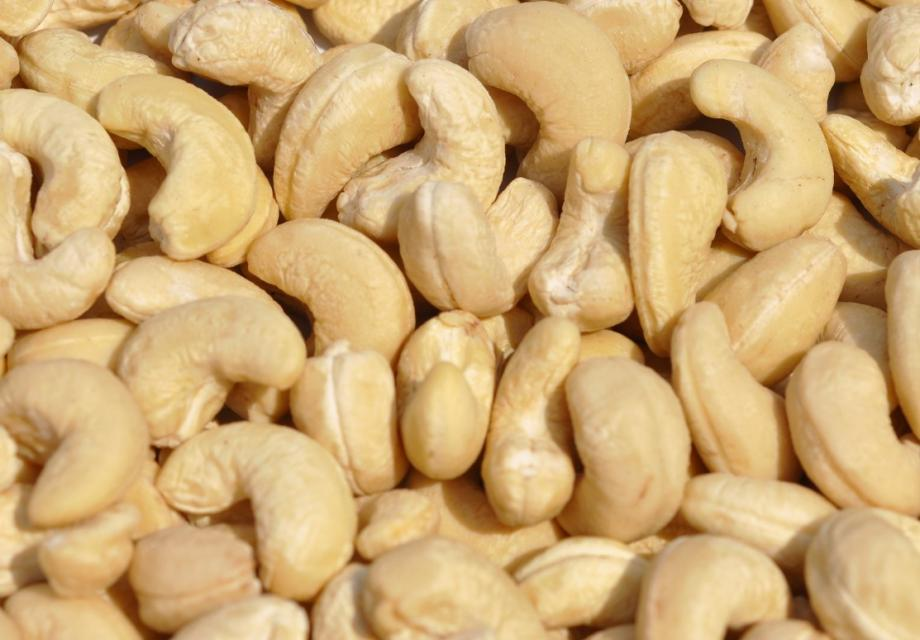 cashew nut for sale